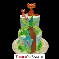 Baby Shower Cakes from Triolo's Bakery Bedford, NH, USA
