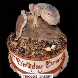 Lizard Birthday Cake