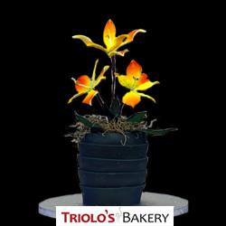 Alstroemeria Flower - Edible Centerpiece Collection