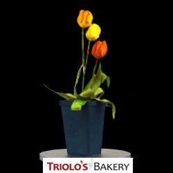 Trio of Tulips - Edible Centerpiece Collection