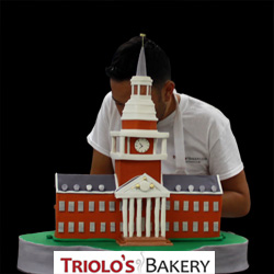 High point University Graduation Cake