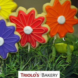 The Gerbera Daisy Cookie Favor, perfect for the garden party, flower shops, floral arrangement accompaniments, mothers day, easter, and birthday favors.  An excellect addition to gift baskets and cookie bouqets.