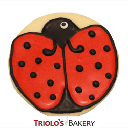 The Ladybug Cookie Favor, a custom cookie design for gift baskets, cookie bouquet, and favors.