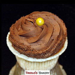 Boston Cream Cupcakes - Triolo's Bakery.
