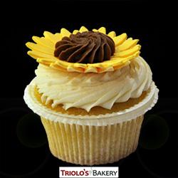 Daisy Gourmet Cupcakes - Triolo's Bakery