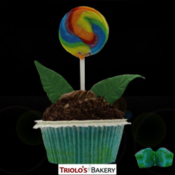 Earth Day Gourmet Cupcakes - Triolo's Bakery