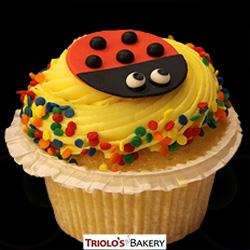 LAdybug Gourmet Cupcakes - Triolo's Bakery