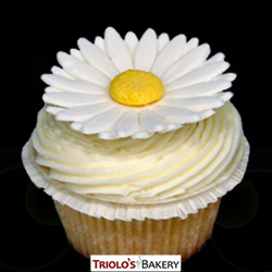 Spring Vanilla Cupcake - Triolo's Bakery