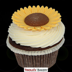 Sunflower Cupcake - Triolo's Bakery